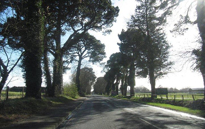 UK_road