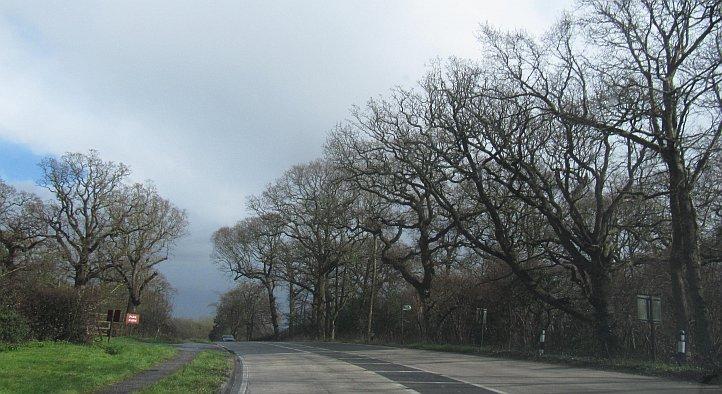 UK_road3