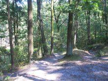 Ścieżka rowerowa wokół zalwu miejscami wspina się na górki i jest raczej dróżką leśną niż ścieżką rowerową