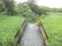 Od tej diabelskiej maszynki rzeka staje się nudnym kanałem