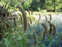 ogrod_botaniczny_lublin18