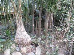 ogrod_botaniczny_lublin21