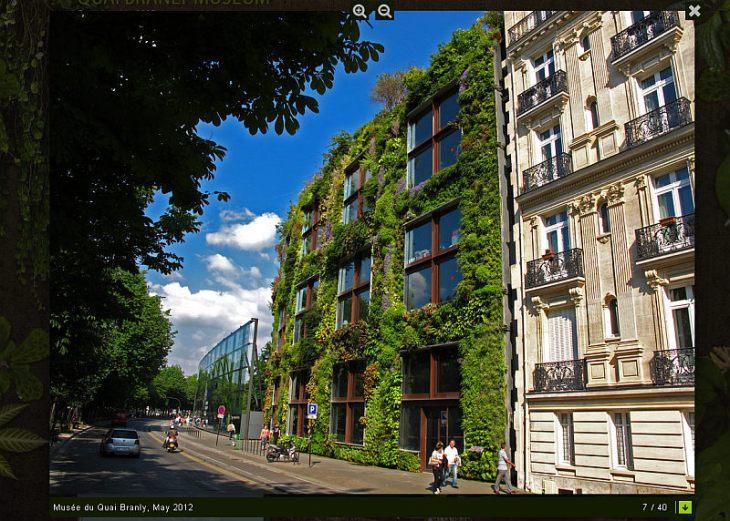 vertical_garden1