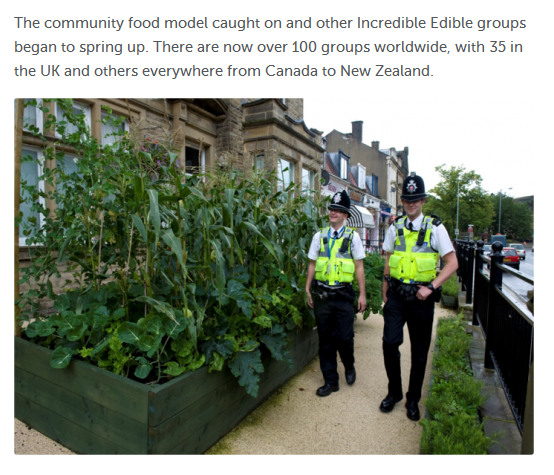 incredible_edible
