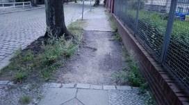 NIe ma chodnika, bo są korzenie drzewa