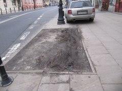 Narutowicza zatoka autobusowa. Parkowanie na klepisku po drzewie i na chodniku na przystanku