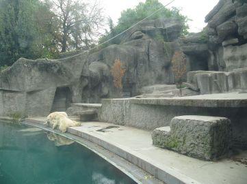 zoo_budapeszt_10