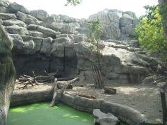zoo_budapeszt_15