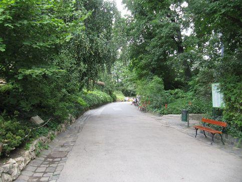 zoo_budapeszt_9